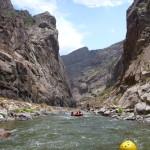 whitewater rafting tour Colorado Jeep Tours