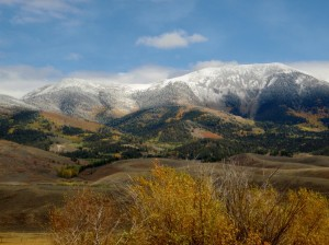 Colorado Fall Colors With Snow Colorado Jeep Tours