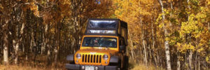 Colorado Jeep Tours blue-sky-aspen Gold Belt