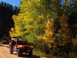 Fall Foliage Jeep Tour Colorado Jeep Tours