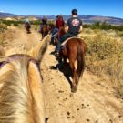 view from horseback rider during trail walk Colorado Jeep Tours