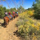 guests on horseback riding trail Colorado Jeep Tours