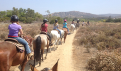 Dawson's Ranch - Colorado Jeep Tours - Horseback Riding