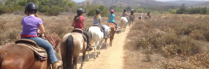 Dawson's Ranch - Colorado Jeep Tours - Horseback Riding