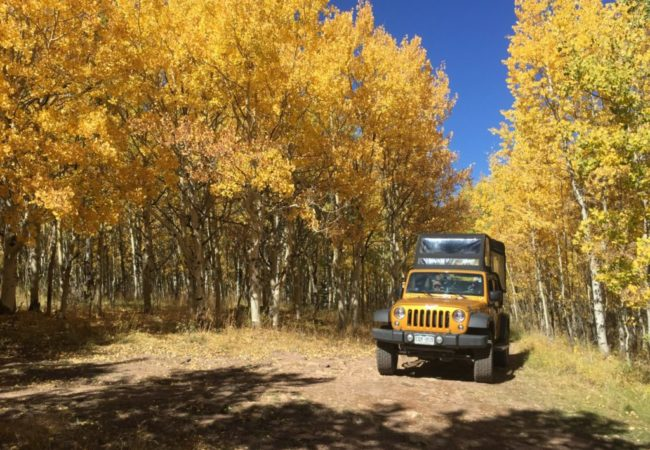 Fall Colorado jeep tour in Cripple creek